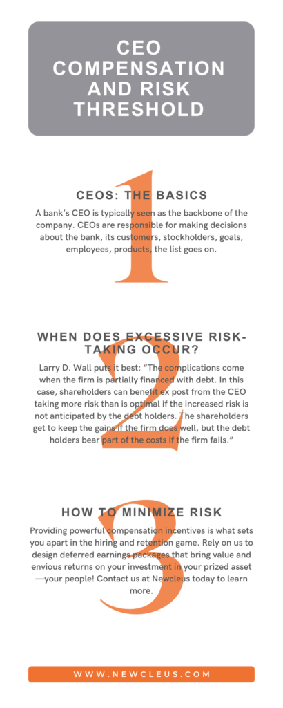 CEO Compensation and Risk
